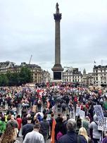 110714_strike Trafalgar